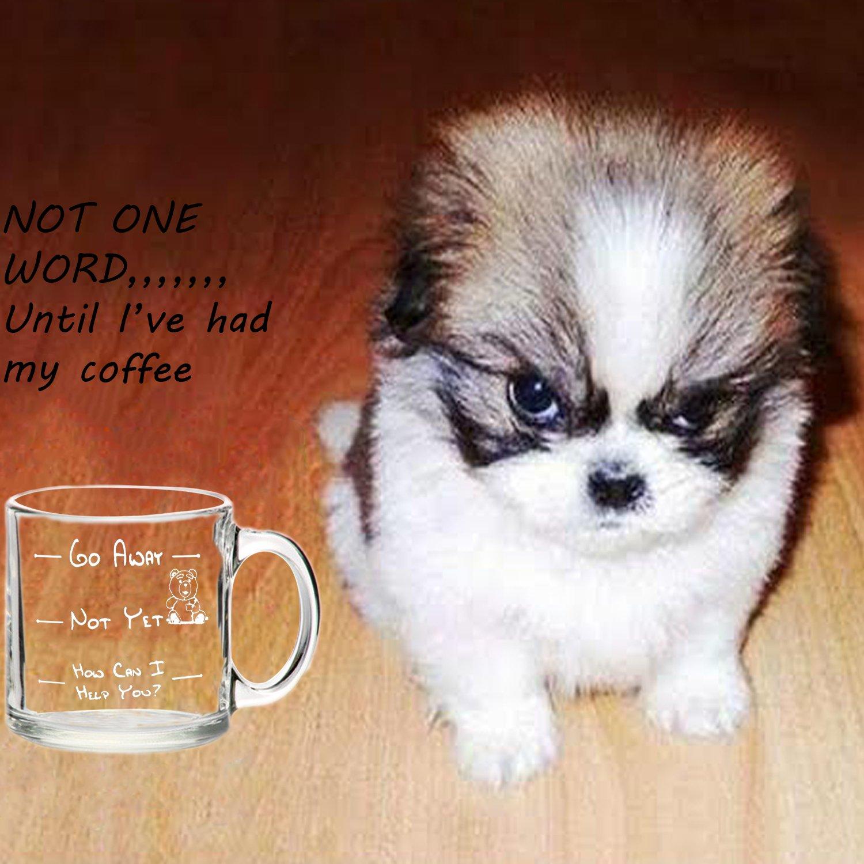 Amazon Funny Glass Coffee Mug Go Away 13 Oz