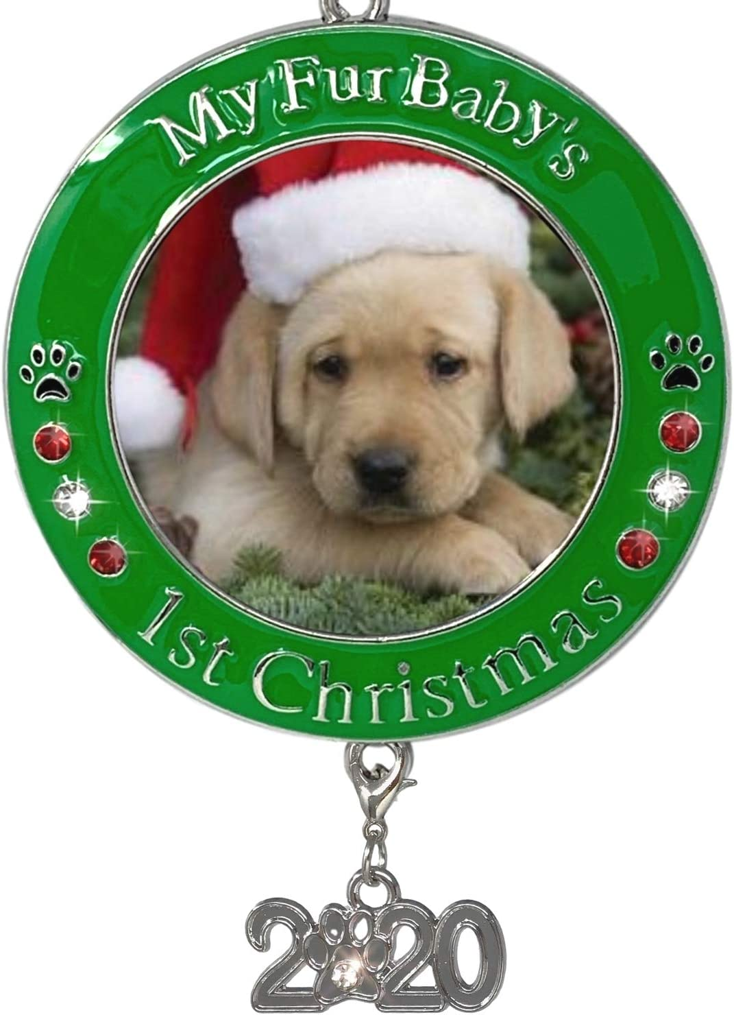 Puppy For Christmas 2020 Amazon.com: BANBERRY DESIGNS Pet's First Christmas 2020   Photo
