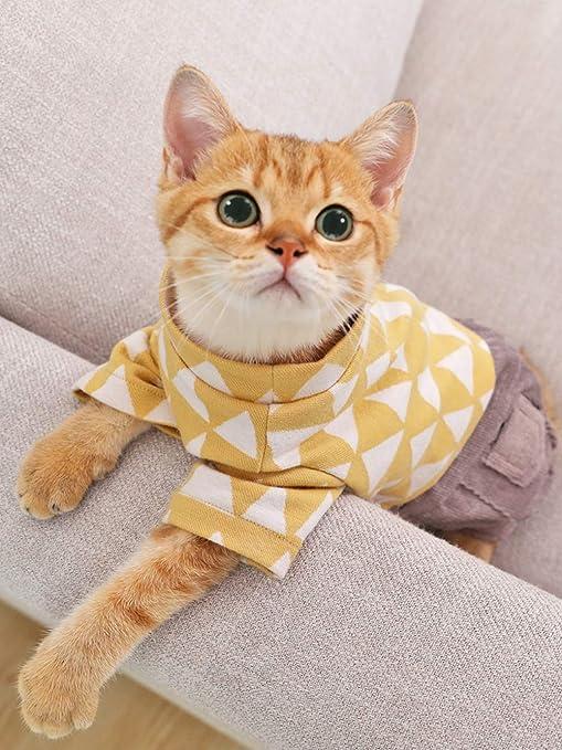 ZHAOYAN Red de Ropa para Gatos, antipelo, EDM, Pollito, Gato, Azul, Lindo, Verano, para Mascotas Delgadas, de Cuatro Patas, Vestido de Primavera y Verano: Amazon.es: Productos para mascotas