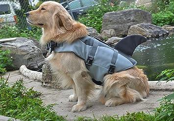 Migliori 7 Giubbotti di salvataggio per cani