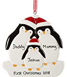Personalised Christmas decoration, family's first decoration, my 1st Xmas decoration, baby gift ornament