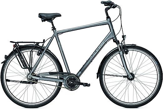 Raleigh – Bicicleta de ciudad unico XXL Hombre hasta 170 kg ...