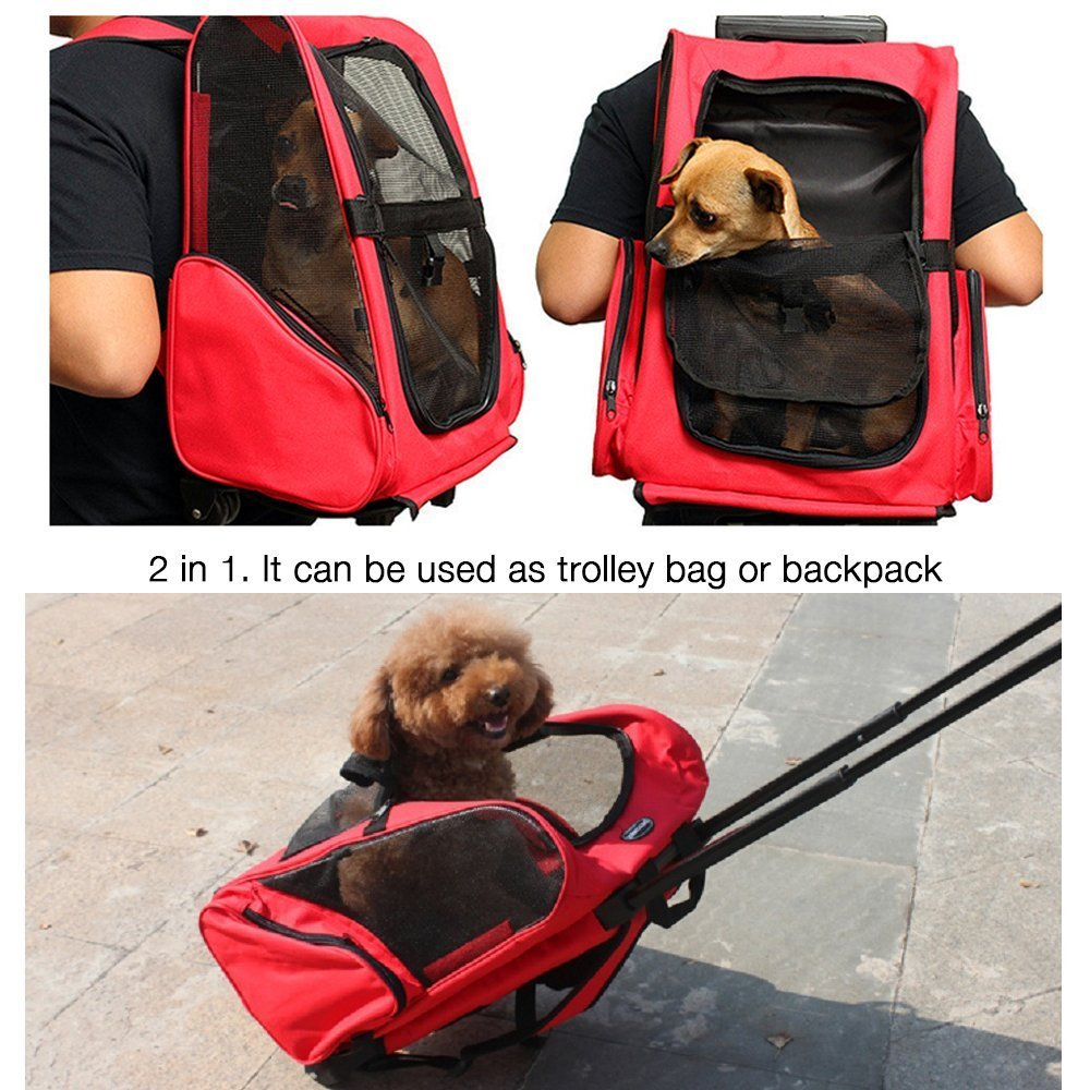Pettom Roll Around 4-in-1 Pet Carrier Travel Backpack for Dogs & Cats&Small Animals Travel Tote Airline Approved (Small-Hold pet up to 10 lbs, Purple) by Pettom (Image #5)