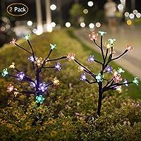 2 Pack Jack & Rose Solar Garden LED Flower Decorative Lights Deals