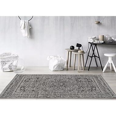 Persian Area Rugs  Area Rug Carpet