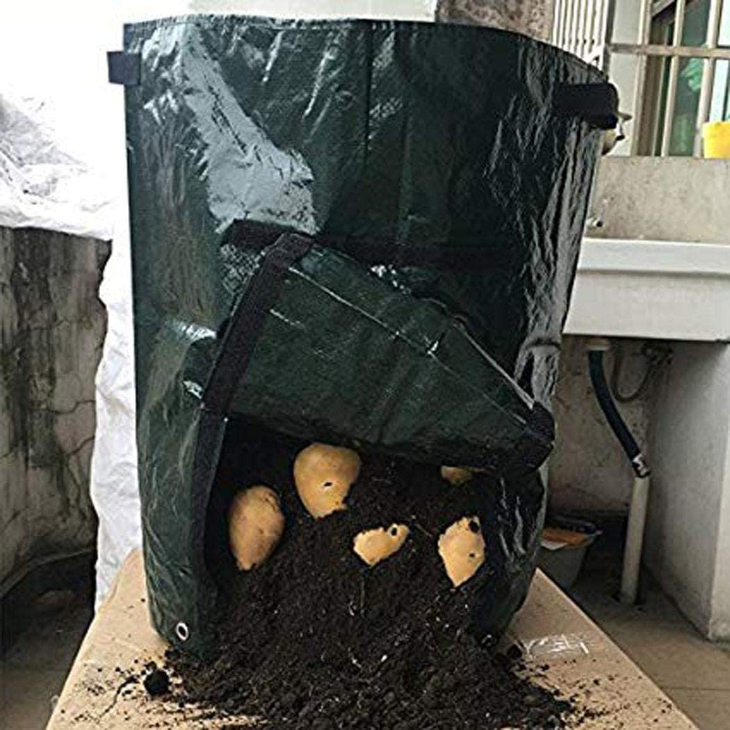 Karne Taro Potato Planter Bag Betriebsblumengras wachsen Topf Hausgarten Anzuchtt/öpfe