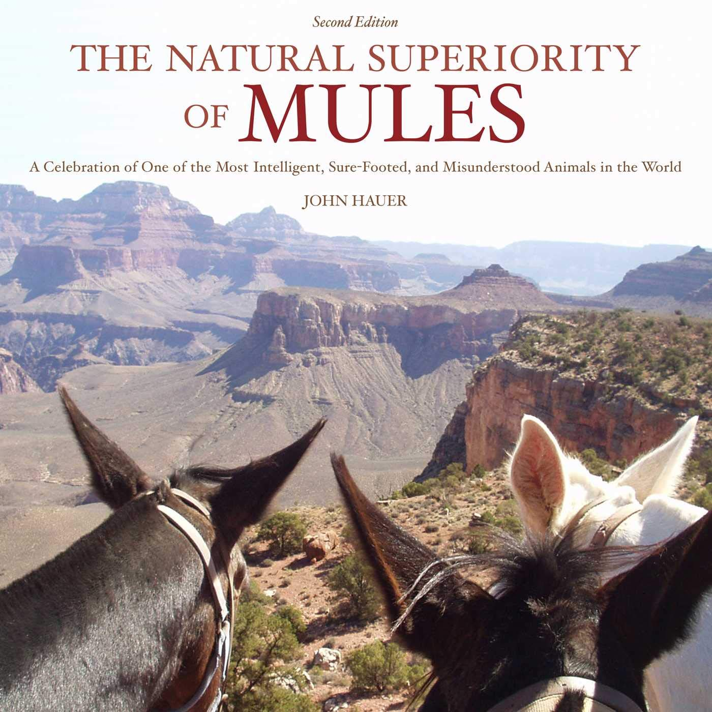 The Natural Superiority Of Mules  A Celebration Of One Of The Most Intelligent Sure Footed And Misunderstood Animals In The World Second Edition