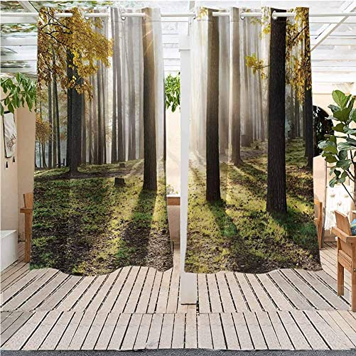 DONEECKL Forest Pergola Curtains Outdoors Landscape Sunrise in The Forest Leaves in Seasonal Woodland Scenery Photo Darkening Thermal Insulated Blackout W72 x L84 inch Yellow Green Brown