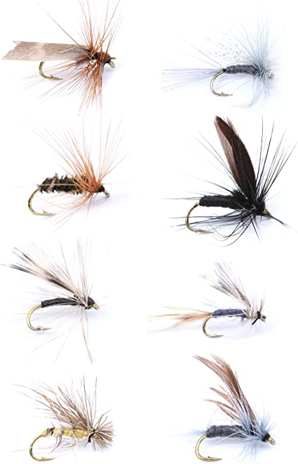 6 Pack Orange baby Nymph Choice of Sizes Fly Fishing Small Hook Goldhead Nymphs