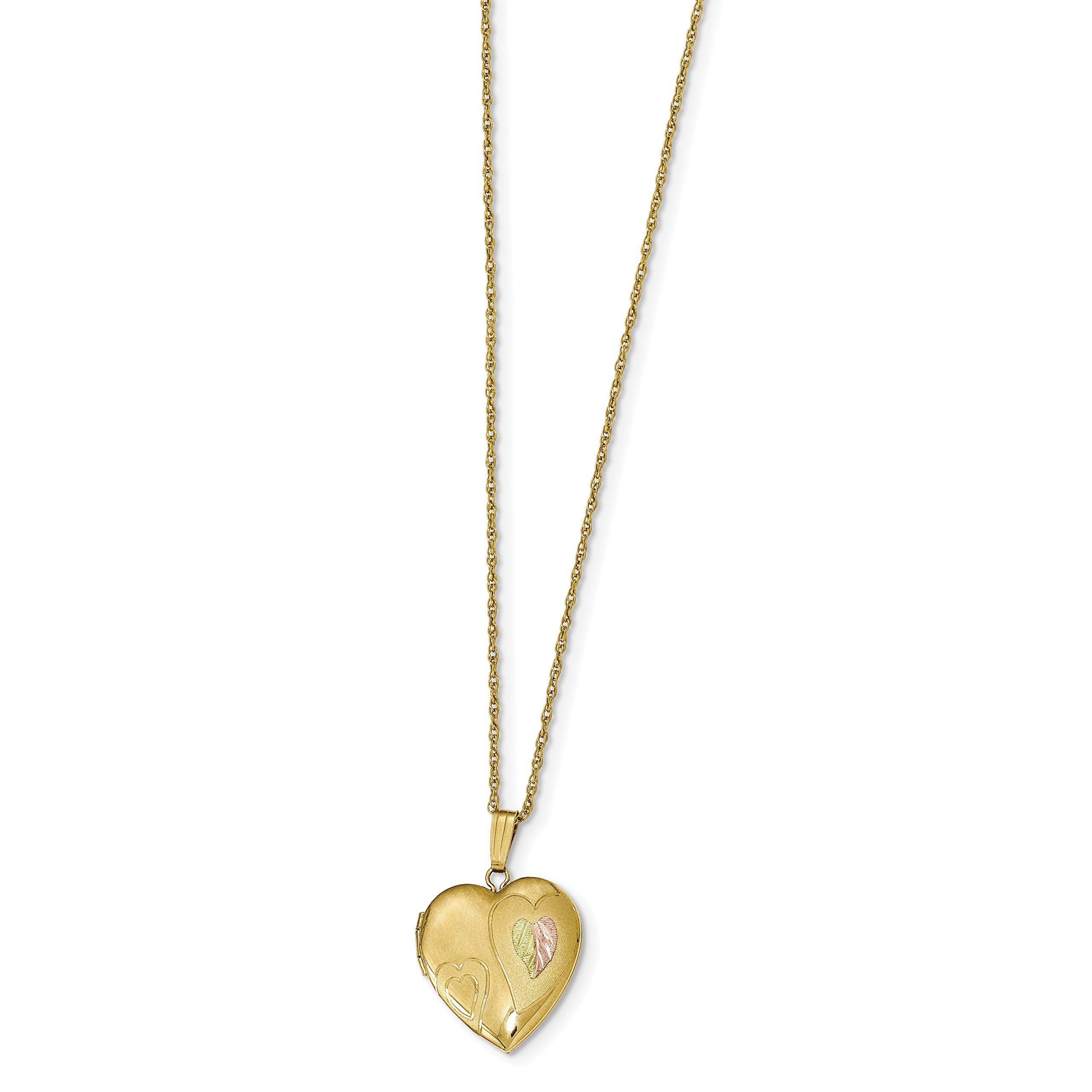 ICE CARATS 14k Yellow Gold Filled 12k Accents Black Hills Photo Pendant Charm Locket Chain Necklace That Holds Pictures Hill Fine Jewelry Gift Set For Women Heart