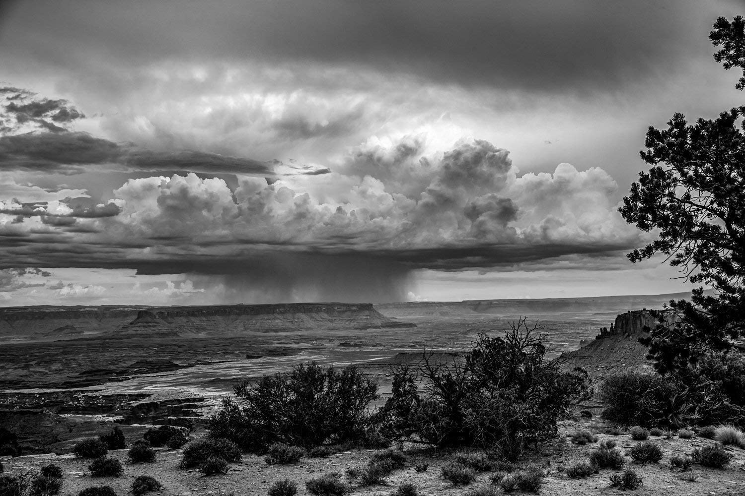 Amazon com utah photography wall art print black and white