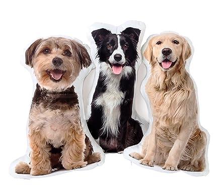 71497cb6021e Amazon.com: Emotional Life Picture Pillow Custom Pet Pillow Dog ...