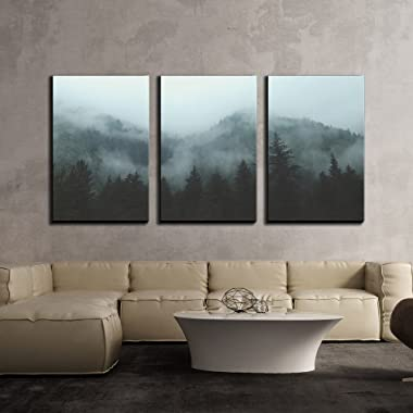 wall26 - 3 Piece Canvas Wall Art - Mountain Forest in Fog - Modern Home Decor Stretched and Framed Ready to Hang - 24 x36 x3 Panels