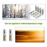 EBL Pack of 8 AA Batteries 2800mAh High Capacity