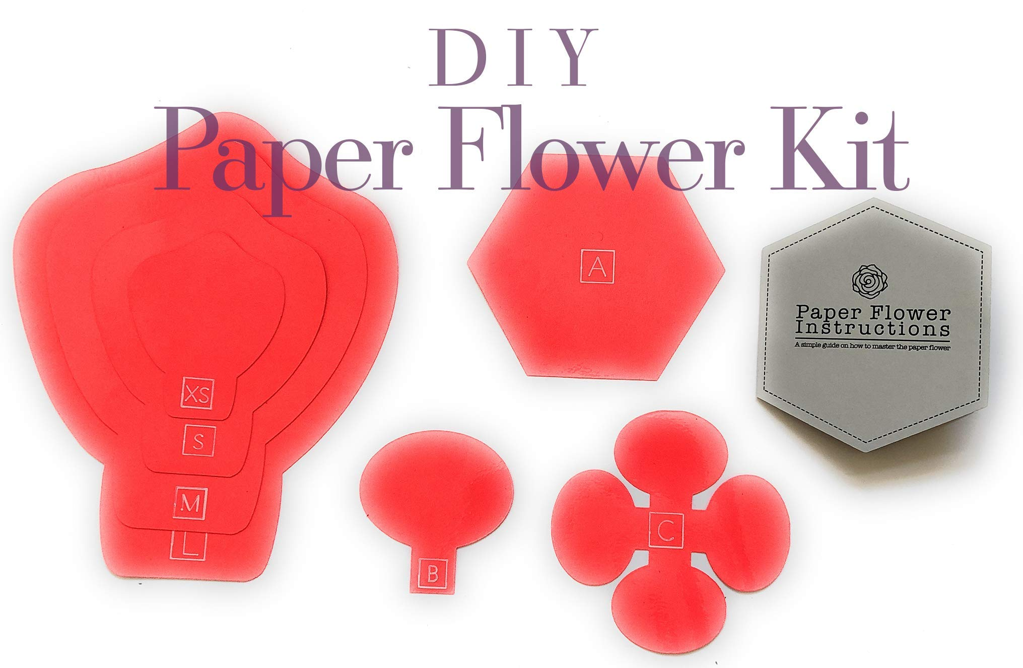 Paper Flower Template Kit - DIY Wall Decorations - Instructions Included - 8 Piece Set