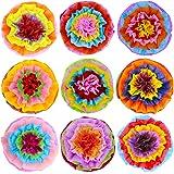 Supla Fiesta - 9 Pompones de Papel para Pompones de Flores, 40 cm de Ancho, para Fiesta con arcoíris Mexicanos, Fiesta…
