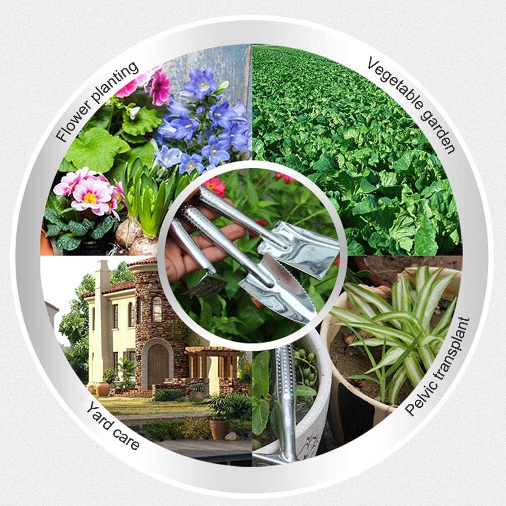 peinat Garden Tool Set, 3PCS Garden Tools + 20PCS Inserted Card (Small Shovel/Cultivator Hand Rake/Transplant Trowel) Stainless Steel Heavy Duty Gardening Kit for Kids Gardening Tools Set : Garden & Outdoor