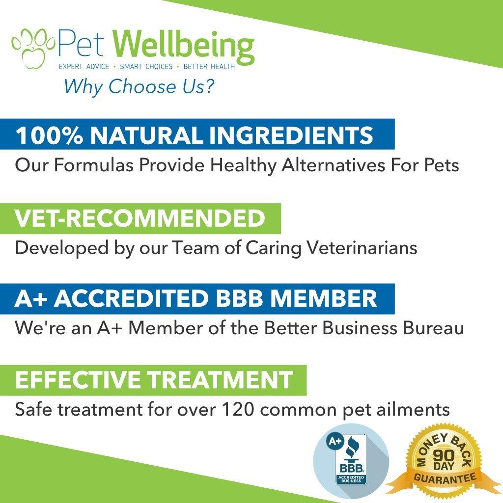Pet Wellbeing - La Vida De Oro para Grandes Caninos - Ayuda del ...
