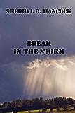 Break In The Storm (WeHo Book 2)