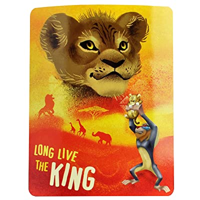 Northwest Disney The Lion King Fleece Throw Blanket, 45 x 60, Multi Color: Home & Kitchen