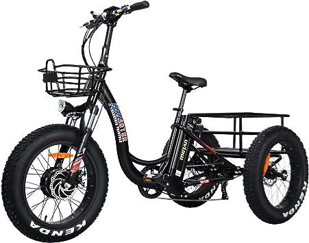 Addmotor Triciclo eléctrico de tres ruedas 500 W Triciclo ...
