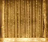 TORCHSTAR 320 LEDs 9.8FT × 9.8FT Window Curtain