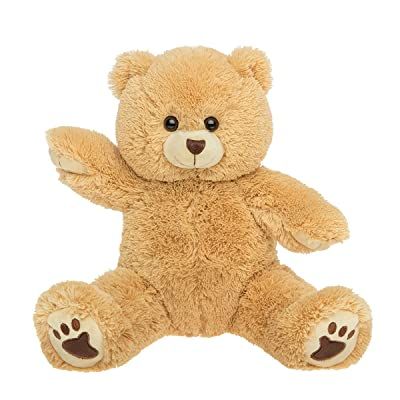 "PERSONAL Recordable Plush 15"" Talking Teddy Bear: Toys & Games"