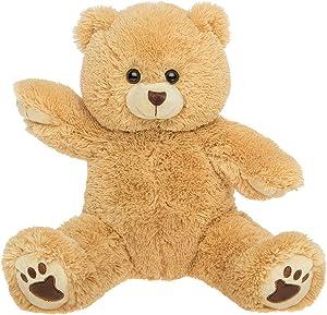 "PERSONAL Recordable Plush 15"" Talking Teddy Bear"