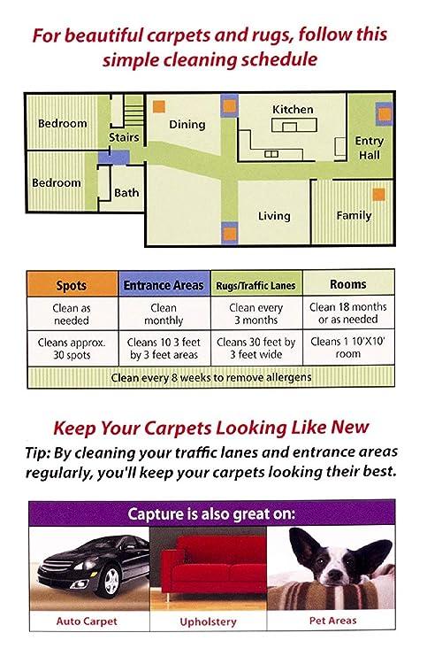 Amazon Com Carpet Dry Cleaner Powder 4 Pound Resolve