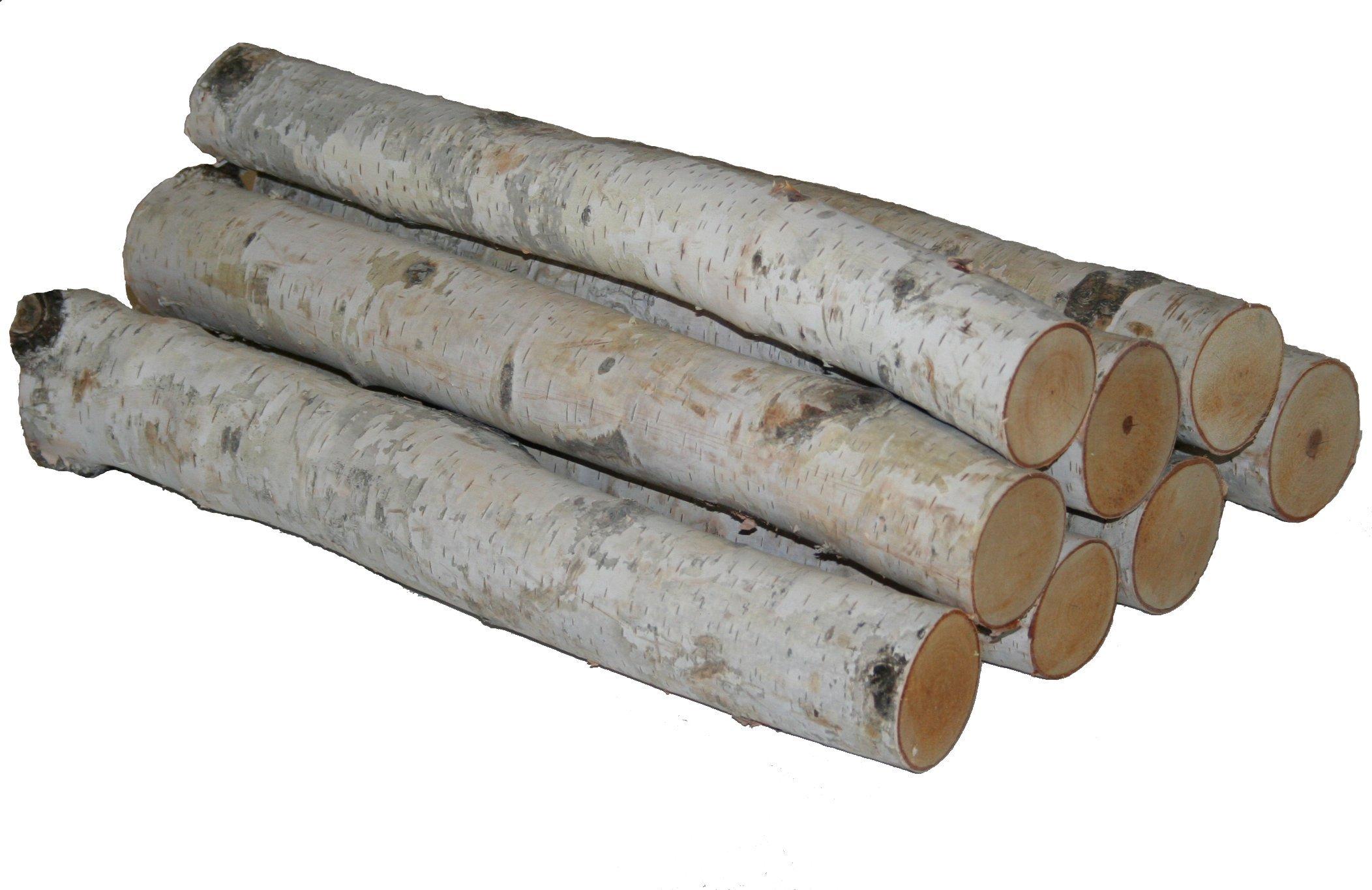 Wilson Enterprises White Birch Log Bundle, by Wilson Enterprises