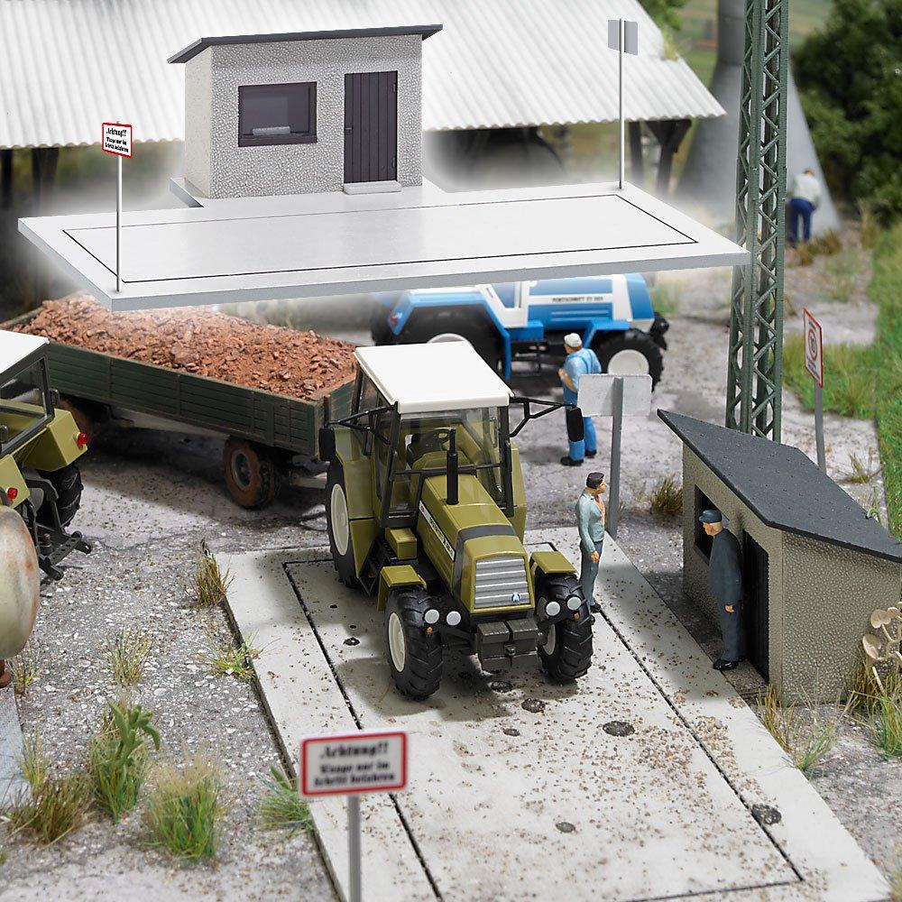 Busch - Edificio ferroviario de modelismo ferroviario H0 escala 1:87 (BUE1528): Amazon.es: Juguetes y juegos