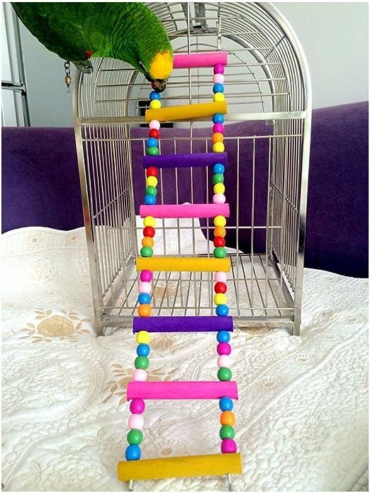 Funny Swing de madera Ratón Rata Parrot Bird hámster Escalera Crawling Puente Toy Estante Jaula Fun: Amazon.es: Productos para mascotas