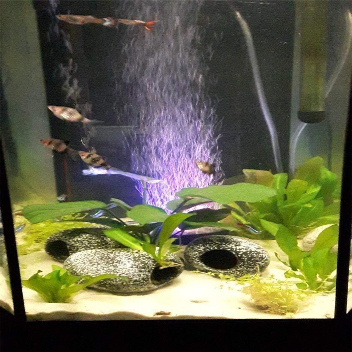 LIUYU Aquarium - Disco difusor de Burbujas con luz LED para pecera, decoración de Tanque: Amazon.es: Productos para mascotas