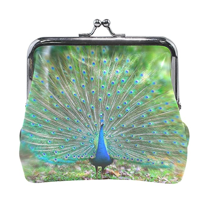 Amazon.com: Monedero tipo billetera para mujer, diseño de ...