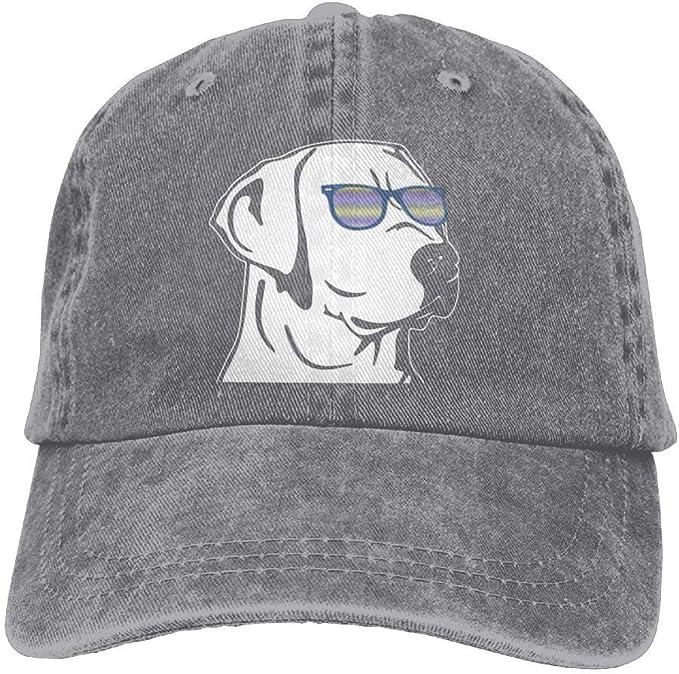Jocper Gorra de béisbol de Labrador Denim Hat Ajustable para ...