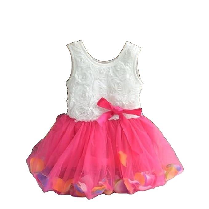 Amazon.com: Bebé niña Princesa niña de las flores pétalos ...