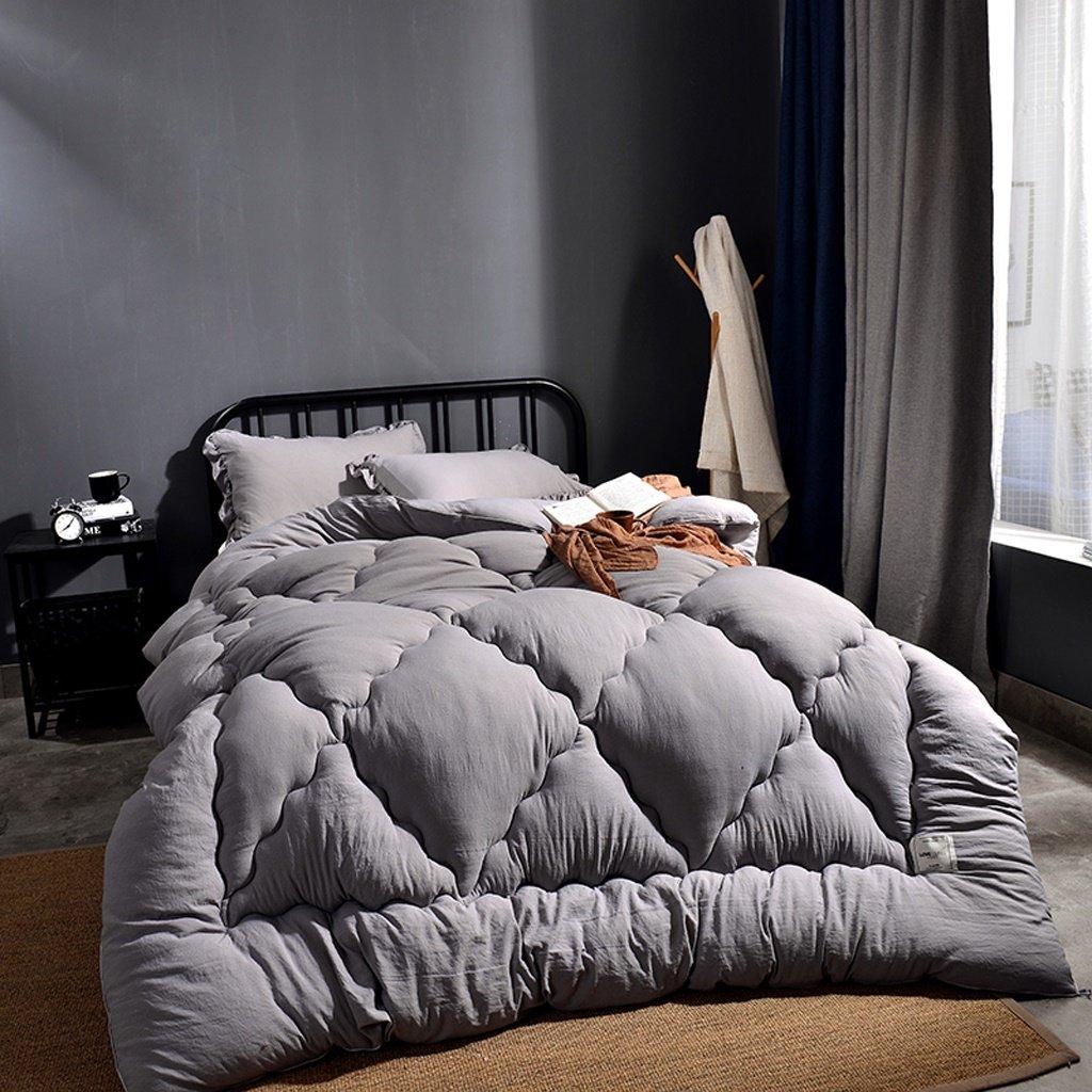 MMM Quilt d'hiver plus épais Conservez l'édredon chaud Espace de base Coton Double climatisation Literie couchage