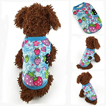 4a932ef7231e New Cute Baby Pet Clothes Teacup Dogs Clothing Puppy Winter Warm Thick  Sweaters (XXXS,