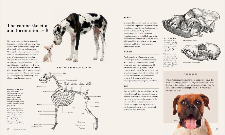 The Dog: A natural history: Amazon.co.uk: Ádám Miklósi ...