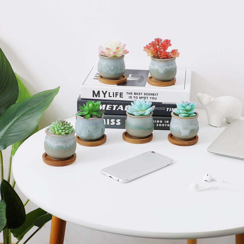T4U 6CM Macetas para Cactus Mini Paquete de 6 Peque/ñas Maceta Suculentas de Ceramica Redondo para Plantas Bonsai Maceteros Decorativos Interior