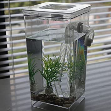 Desktop Aquarium Mini Self-cleaning Grass Fish Tank Magic Fish Tank Automatic Decontamination Tank(
