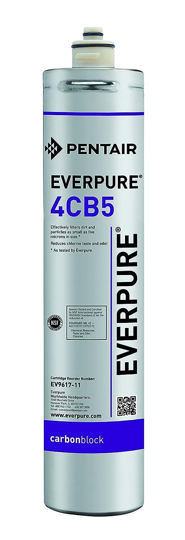 Everpure everpure-4cb5EV9617–11cartuccia del filtro di ricambio 9617-11