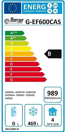 Gastro EF600BTCAS - Frigorífico para hostelería: Amazon.es ...