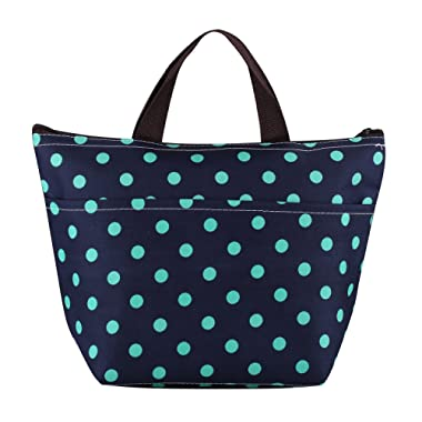 Dxg Waterproof Lunch Bag Tote Lunch Box Insulated Cooler Carry Bag for Travel and Picnic, Dark Blue with polka dots