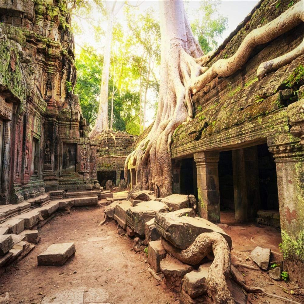 OFILA 天使のワット 背景 8 x 8フィート 写真 背景 古い木 ジャングル彫刻 古代の寺院 歴史 文明 バニアン 森 ビデオ スタジオ 写真 小道具   B07H4556GV