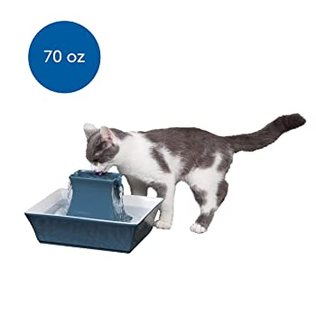 PetSafe Cat and Dog Water Fountain - Automatic Water Dispenser - Drinkwell Pagoda Ceramic Fountain for Pets