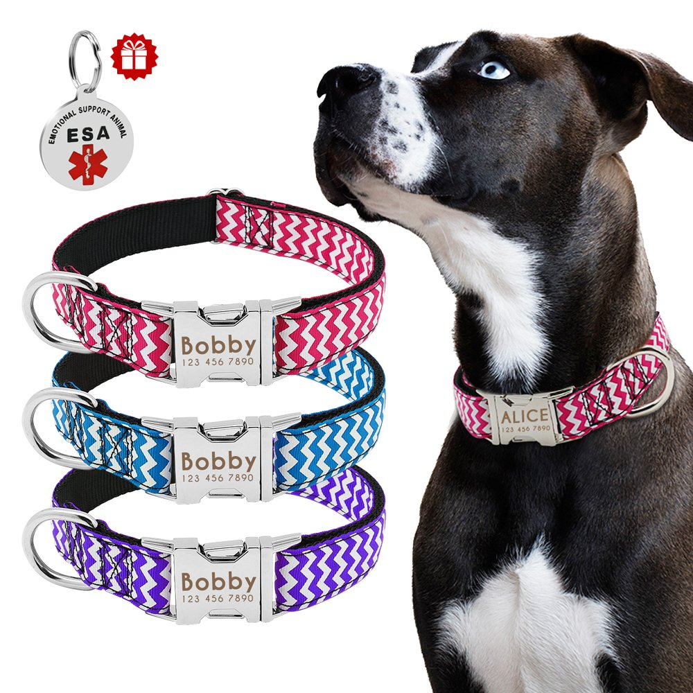 Beirui Custom Nylon Dog Collar-Personalized Engraved Stainless Steel Pet ID Tags Name Plated-Quick Release Buckle Dog Collars Medium Large Dogs-ESA ID Tag as Gift,13.5-22.5'' Hot Pink