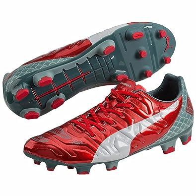 30511f01807 Puma evoPOWER 2.2 Graphic FG Mens Football Boots