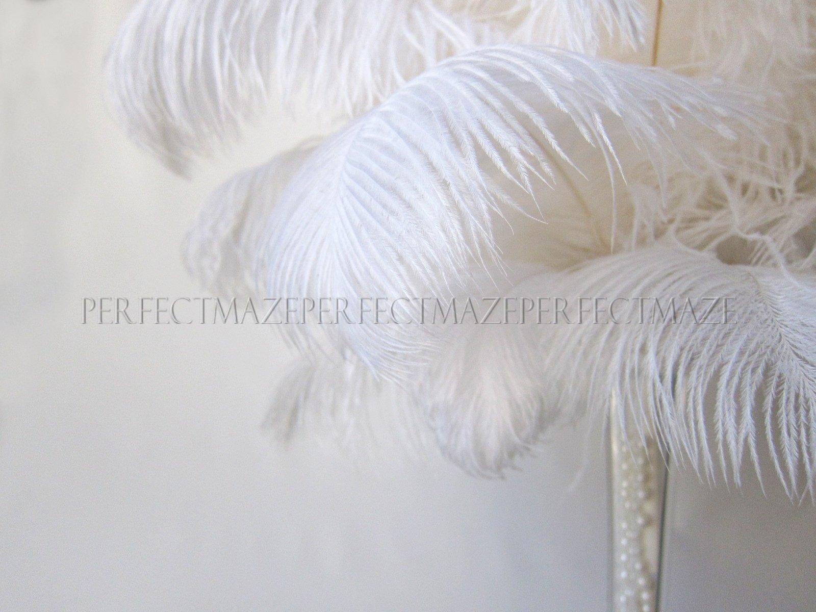 Perfectmaze 18''-20'' Ostrich Feather Premium Quality for Wedding Party Centerpiece Vase Decoration (100)