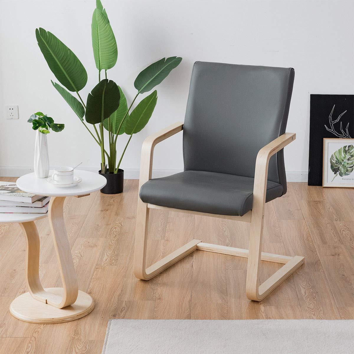 Amazon.com: Giantex Moderna silla de salón de acento ...